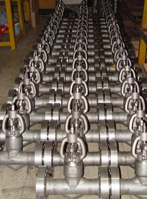 Globe valve 1.5in 1500LB RF flange end