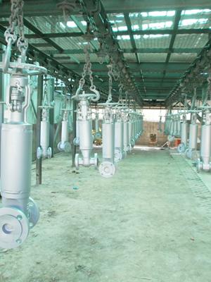 Bellow valves